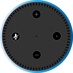 echo dot support
